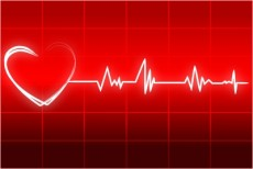 heart15060502