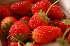 strawberry15121901