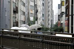 rain17112202